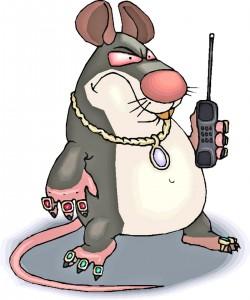Новый Крыс